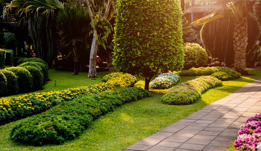 Landscaping Services Tacoma, WA