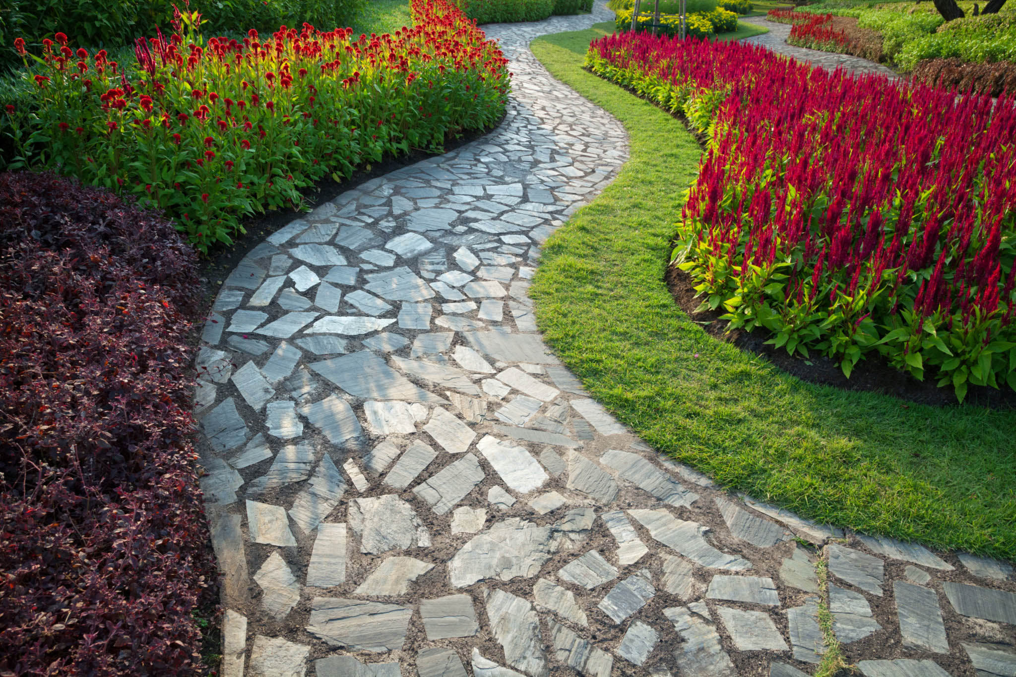 Choosing the Right Local Landscape Company