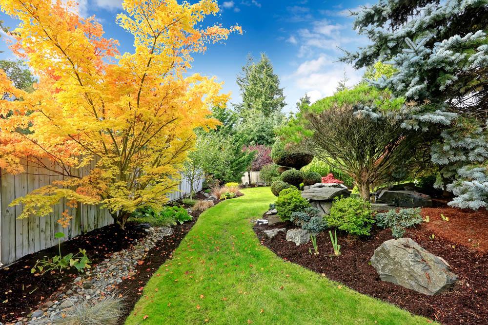 Lawn Maintenance Tacoma WA