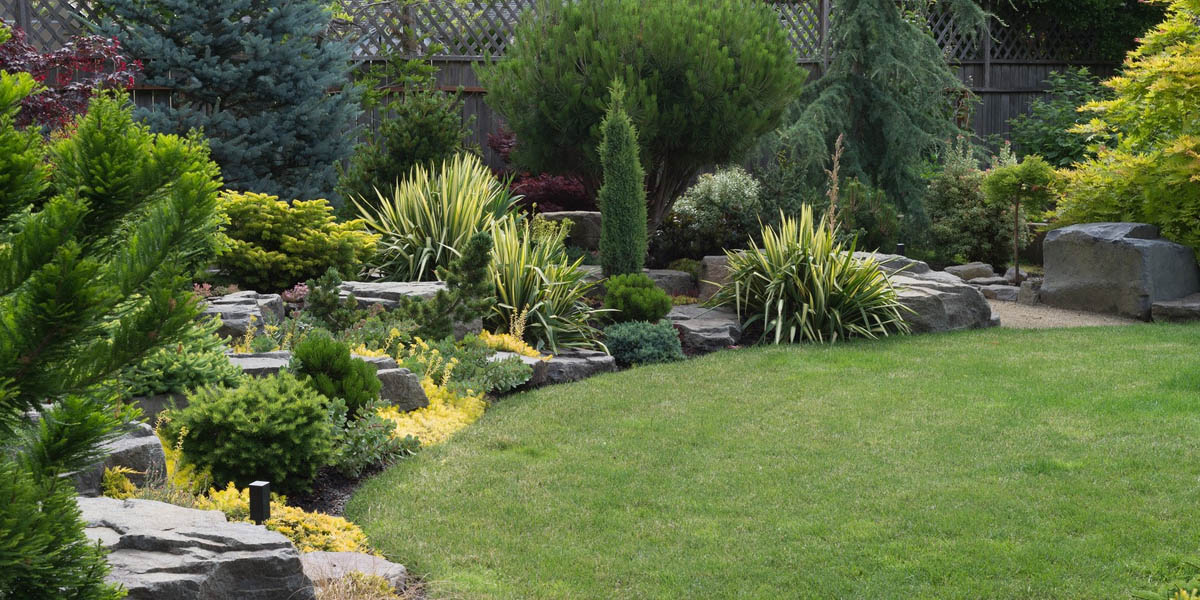 Tacoma Lawn Care Services