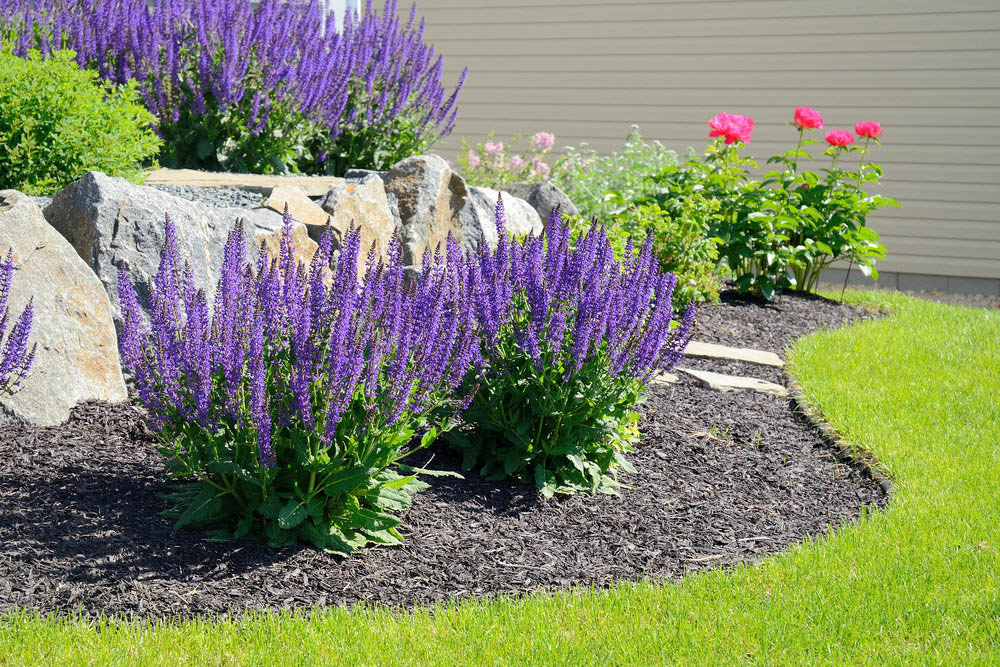 The Importance Of Landscaping